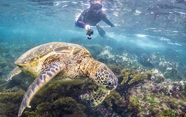 Galapagos cruises deals Latin Trails