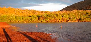 rabida island galapagos islands