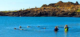 snorkel in galapagos islands