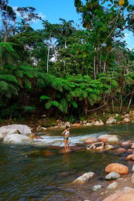 Amazon tours latin trails