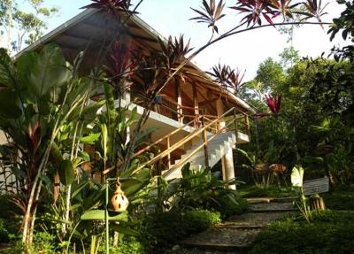 Hakuna-Matata-Amazon-Lodge-Latin-Trails1