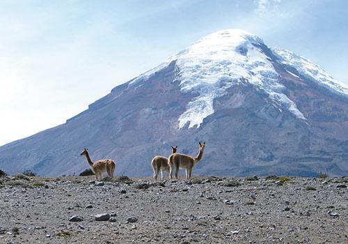 Tour en los Andes