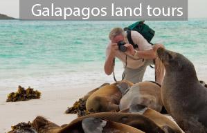 galapagos-land-tours