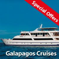 Galapapagos cruises last minute