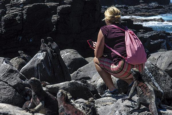 Galapagos experiences