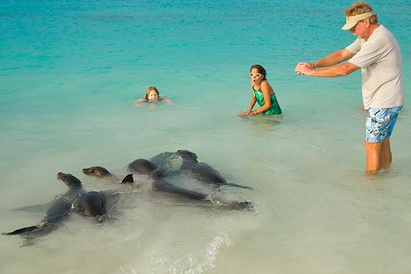 sealion galapagos islands