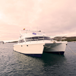 Our Galapagos Cruises