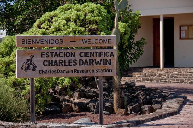 charles darwin galapagos island