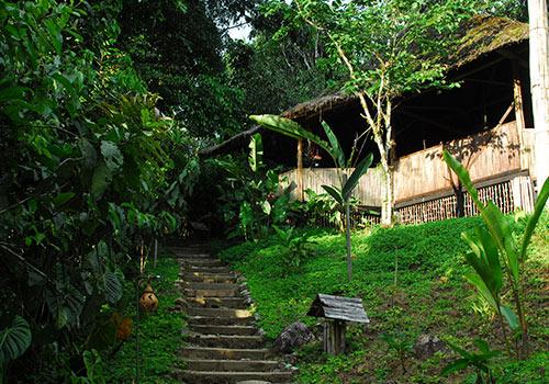 Hakuna Matata Amazon Lodge