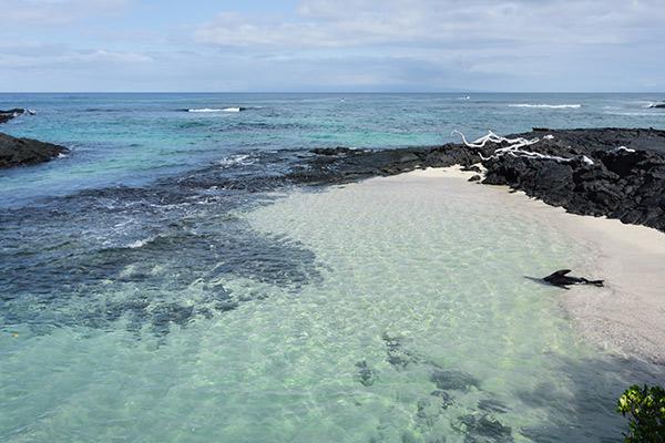 tours to isabela island