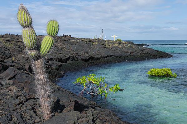 isabela island tours