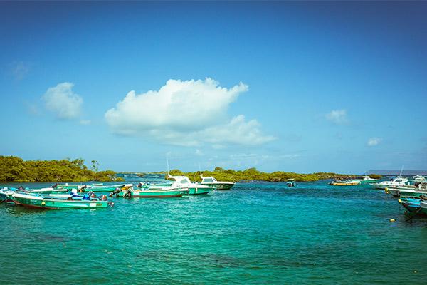 Island Hopping | Isla Isabela