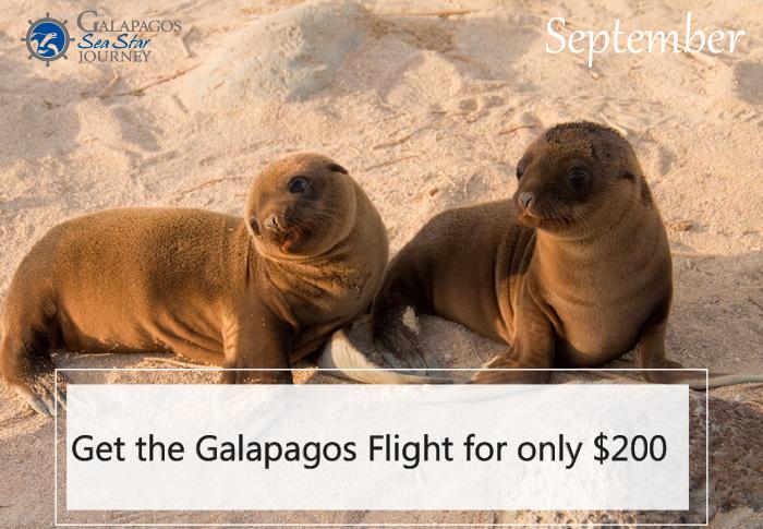 Galapagos Cruises Deals