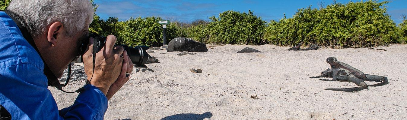 Galapagos Islands Tours