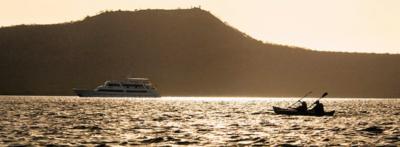 Kayak| Cruise