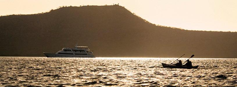 Kayak  Cruise