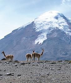 Chimborazo-ecuador-Latin-trails