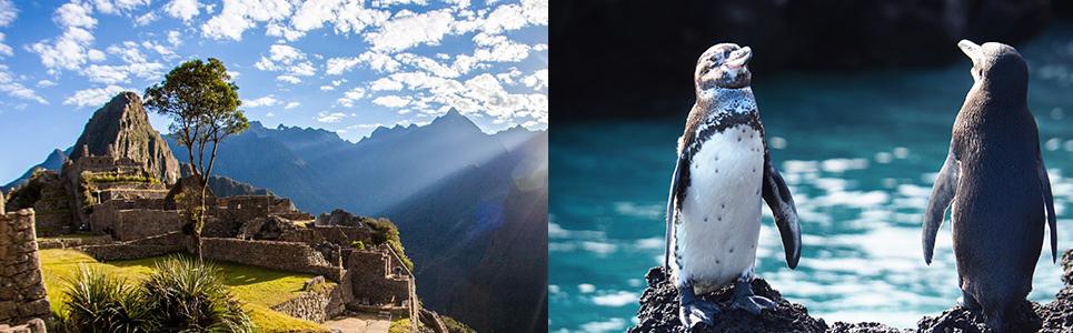 Why should I take a combined tour Peru & Ecuador?