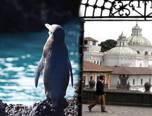 Dos maravillas Galapagos y Andes