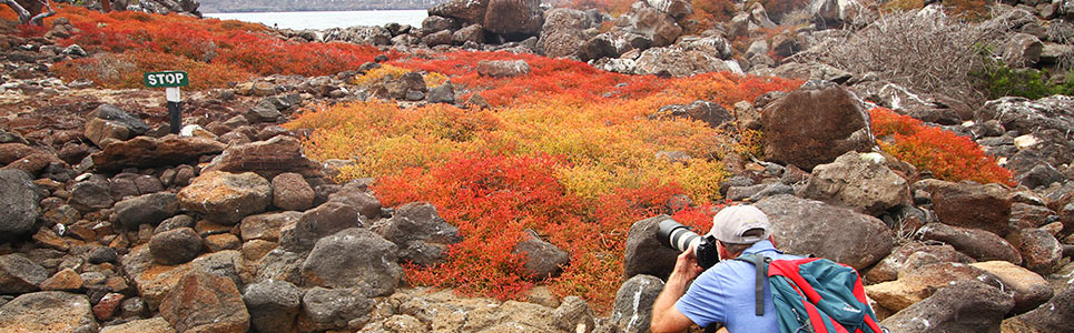 Galapagos Islands Tours | Island Hopping