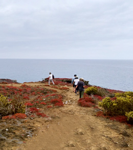 what-is-the-best-itinerary-in-galapagos6