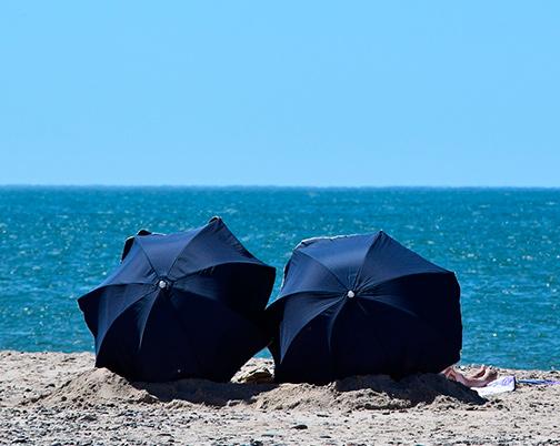 Sunbathing seniors in Galapagos