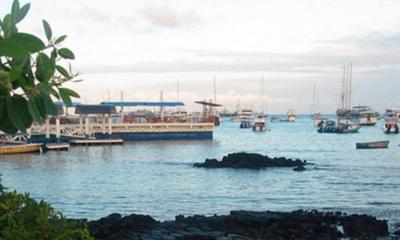 Santa Cruz Island | Galapagos