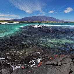 fernandina-island-galapagos