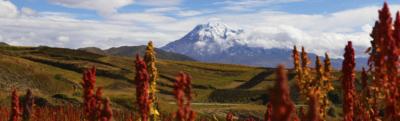 Chimborazo   Riobamba