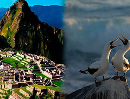 Tour doble aventura: Galapagos y Machu Picchu