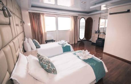 Standard Cabin MC   Petrel