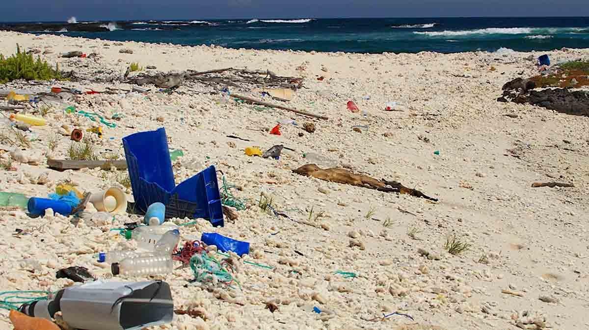 Plastic on Galapagos Beaches